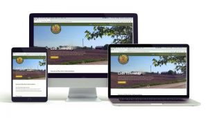 Lodi Township website